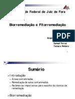 Seminario_Biorremediação_Fitorremediação