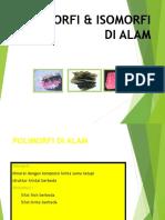3.Polimorfi Alam Pert 2