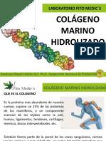 Colágeno Marino Hidrolizado