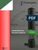 Engenharia Das Reações Químicas