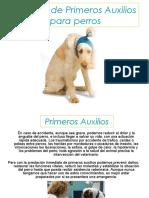 Manual Primeros Auxilios Canino PERROS K9