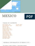 181206 mexico project - marina villarreal  3