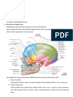 Sistematika Membaca Ct-scan