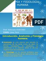 Introducción anatomía fisiología.pdf