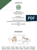 Presentasi THT Rinosinusitis