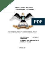 Informe Derecho Ambiental Zonas Protegidas