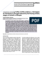 Variations Among Coffee (Coffea arabica L.) Genotypes for Sensitivity to Drought Induced by Soil Drying at Early stages of Growth in Ethiopia