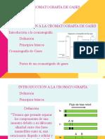Cromatografia Gases (2)