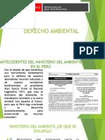derecho ambiental ppt