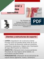 Patologia Oral y Glandulas Salivales