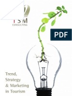 presentacintsmconsulting-100204094152-phpapp01