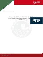 Vivar Jorge Diseño Planta Piloto Extraccion Oleorresina Paprika Co2 Fluido Supercritico Anexos