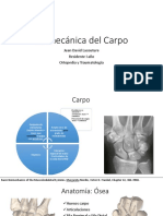 Biomecanica Del Carpo 2