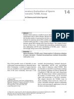 Laboratory Evaluation of Sperm Chromatin-TUNEL Assay