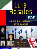 LA LUZ INTERRUMPIDA Y OTROS POEMAS, POR LUIS ROSALES, ESPAÑA