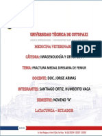 casoclinicofracturadefemur-131031003832-phpapp01