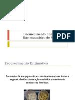 4. Escurecimento Enzimático e Não Enzimático