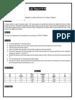 Turgo Turbine Lab Report