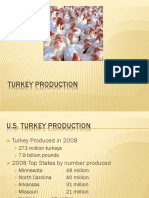 Turkey Production Pres