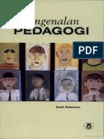 Pengenalan Pedagogi