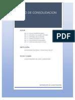ENSAYO-DE-CONSOLIDACION-2017-1.docx