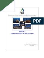Apostila de Processamento de GN-2010 - PETROBRAS.pdf