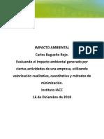 Impacto_Ambiental_Tarea_S6.docx
