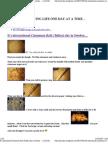 Cinnamon Roll ( Bullar) Day in Sweden 20071004