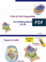 Cell Organelles Regents