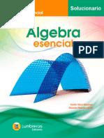 Colección Esencial - Sol. de Álgebra