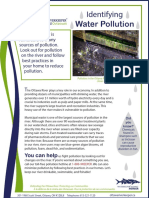 1 Identifying Water Pollution