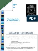 Infeccion Por Anaerobios.9