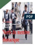 22- Nerfs Du Membre Thoracique