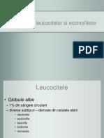 Numararea leucocitelor si a eozinofilelor