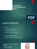 ÁCIDOS+GRASOS+OMEGA-3+EN+LAS+ENFERMEDADES