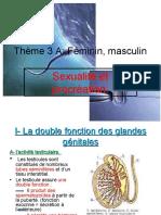 activité testiculaire ch 2 sexualite procreation 2013 bis.pdf