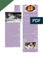 CROYANCES ANCIENNES AU NORD  déesse à Glastonbury.pdf