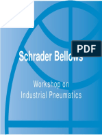 Workshop on Industrial Pneumatics