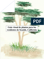 final spanish plant guide