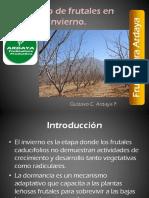 Manejo de Frutales en Invierno PDF.