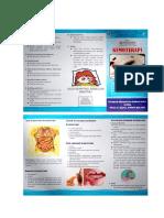 Leaflet Kemoterapi R.25.docx