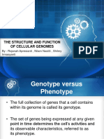 PPT Biomolekul Kel.3