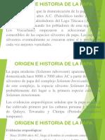 ORIGEN E HISTORIA DE LA PAPA_24102017.pptx