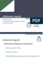 Abdomenagudo Enfinflamintest 110325190556 Phpapp01