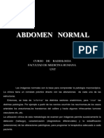 Abdomen Normal