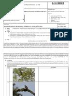 Log Sheet Perilaku Burung