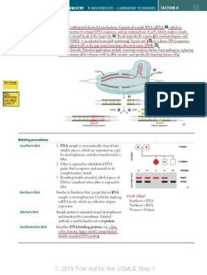2019 First Aid for the USMLE Step 1 -- Example Redlined
