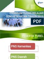Tubel 2019.pdf
