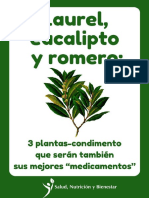 Laurel, eucalipto y romero