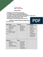 0_0planificare2.doc